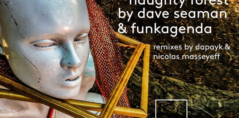 Dave Seaman & Funkagenda – Naughty Forest (Dapayk & Nicolas Masseyeff Remixes) [Selador Recordings]