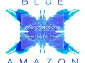 Blue Amazon. Interpretations Mixed by Ian Ossia (Convert Recordings)