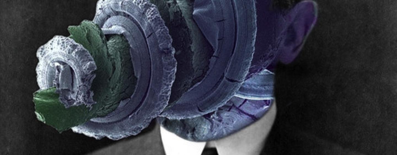 Metronomy – I'm Aquarius / Love Letters (Remixes) [FAYER]