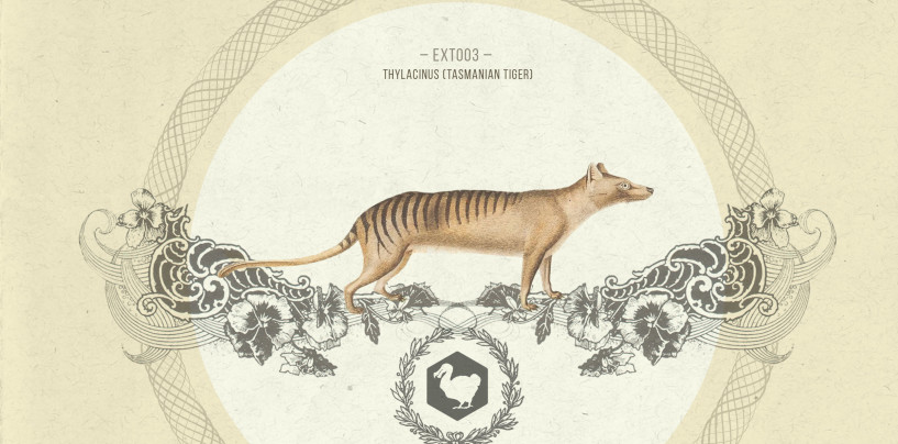 Glenn Morrison & Brian Cid – Innervisions / Nu  [Extinct Records]