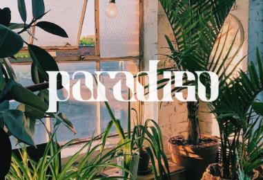 Premiere: Vini Pistori – Sentimental Space Disco [Paradiso Records]